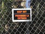 TreeCutting(01-10-2113)-1