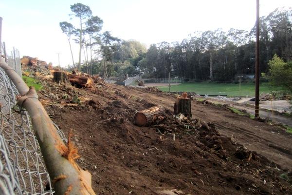 logged slope 2