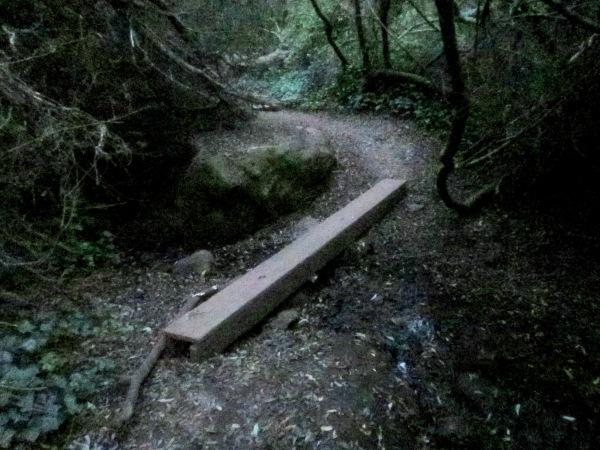 beam bridge over the creek